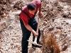 Копање врсте у Мајдану у Рупељеву